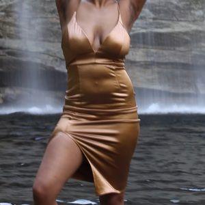 Bronze Silk Dress